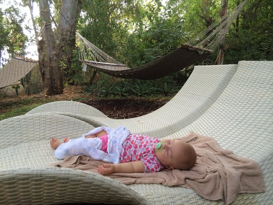 Pina Balev : Sleeping like a baby