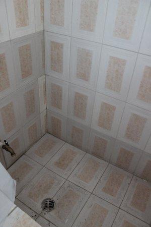 Pacot Breeze Hotel: douche, parfois pas très propre à notre arrivée