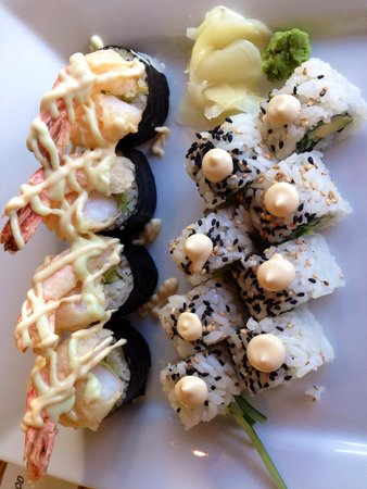 Wild Orchid Bistro & Sushi Lounge: Best I've had in a long time