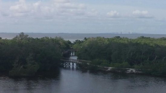 Robinson Nature Preserve: View from observation tower