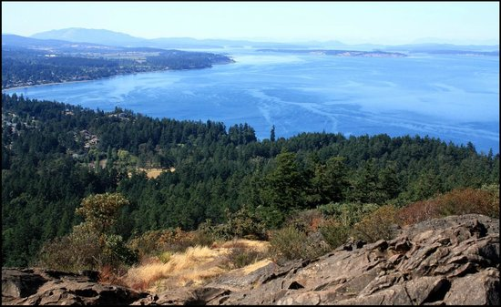 Mount Douglas Park: View from the top
