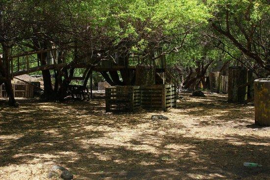 Maui Paintball: Battlefield