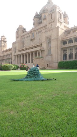 Umaid Bhawan Palace Jodhpur : Palace