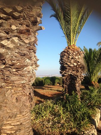 Hotel Ta' Cenc : Vue de la piscine
