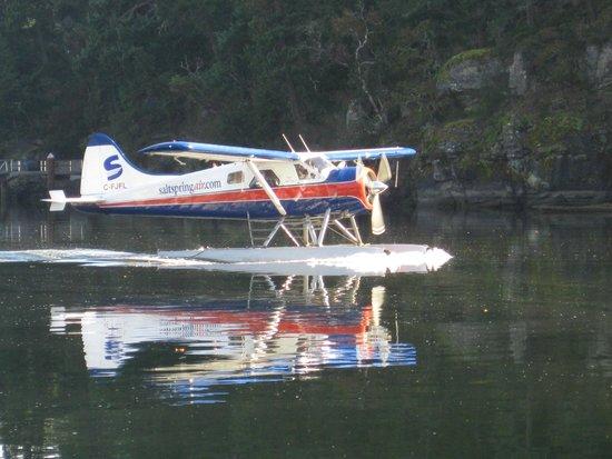 SaltSpring Air Tours : Saltspring Air in Maple Bay