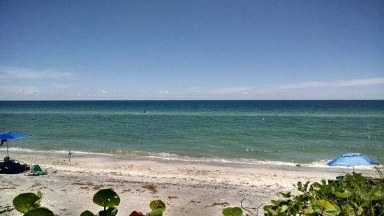 Pearl Beach Inn: View from Room #7 patio