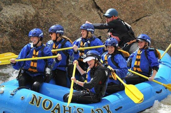 Noah's Ark Colorado Rafting & Aerial Adventure Park: Team Building