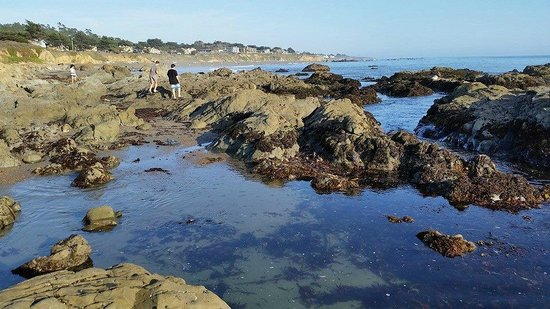 Moonstone Beach in front of Cambria Landing Inn & Suites