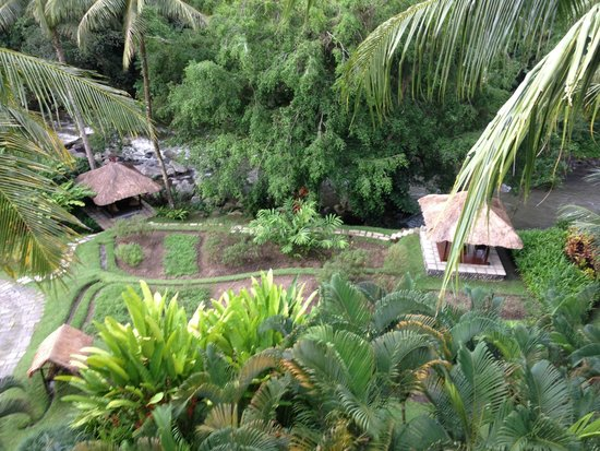 Four Seasons Resort Bali at Sayan: View from (master) bedroom porch