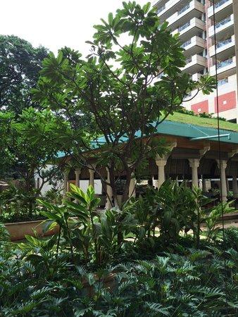 ITC Gardenia, Bengaluru: The outdoor section of the coffee shop
