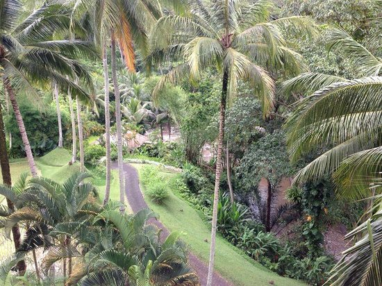 Sayan, Indonesia: View from the room