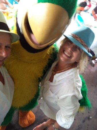 Jimmy Buffett's Margaritaville: parotnme