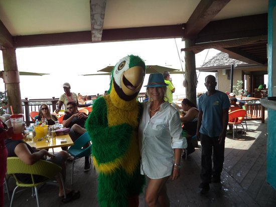 Jimmy Buffett's Margaritaville: Funtimes