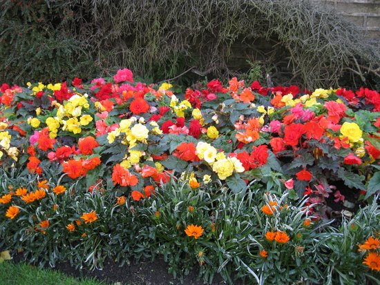 Nunnington Hall: gardens