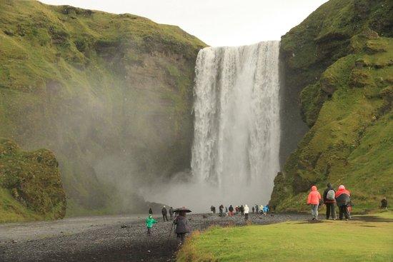 Gray Line Iceland: Skogafoss Waterfall