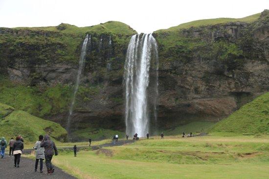 Gray Line Iceland: Seljalandsfoss
