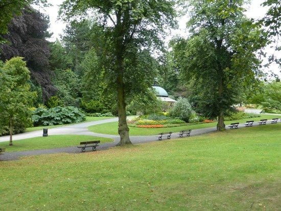 Valley Gardens 4