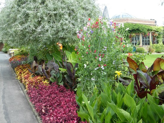 Valley Gardens 2