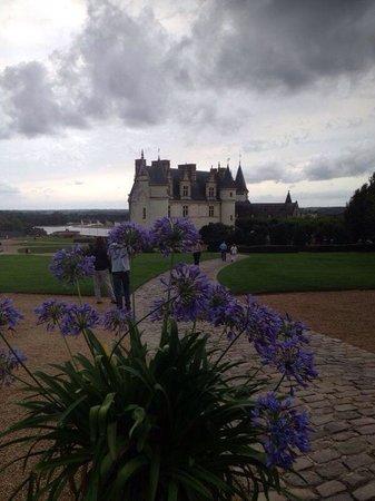 Château d'Amboise : Vista del Castillo de Amboise