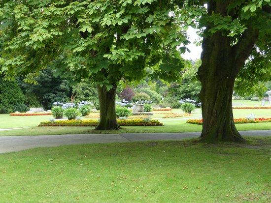 Valley Gardens 5