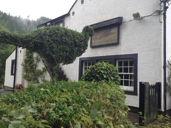 The Pheasant Inn: Beer Garden