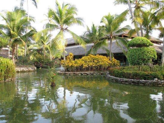 Iberostar Bavaro Suites: Garden