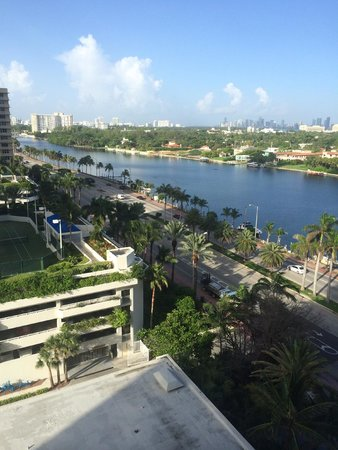 Miami Beach Resort and Spa : view