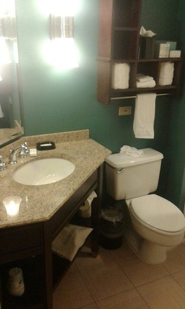 Hampton Inn Chicago-Midway Airport: Bathroom