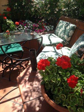 Hotel Diana Roof Garden: Le toit terrasse