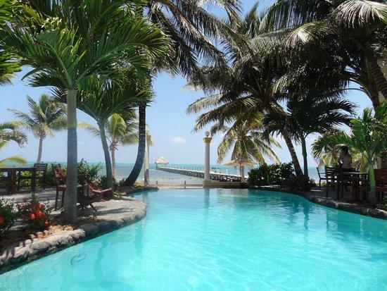 Pelican Reef Villas Resort : Pool