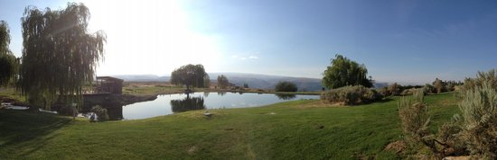 Cave B Estate Winery & Resort: Pond