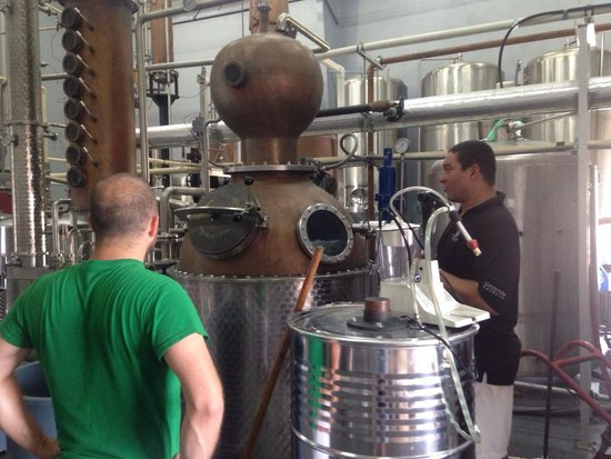 Cayman Spirits Co. Distillery: Our incredible tour guide showing us around! Nicest guy ever!