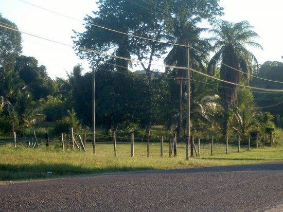 Unitedville Village