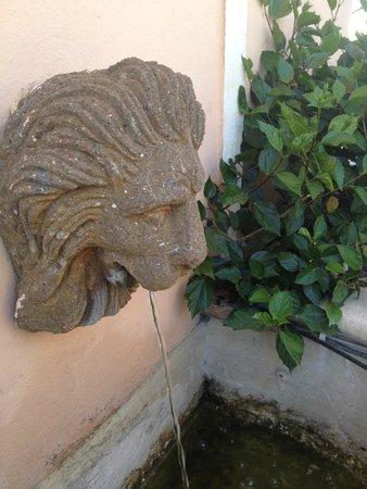 Hotel Diana Roof Garden: La fontaine sur le toit
