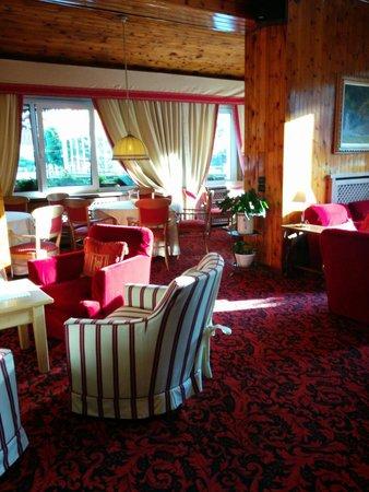 Hotel Baita dei Pini: Interno