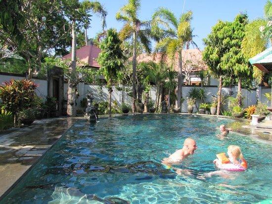 Villas Oasis: zwembad