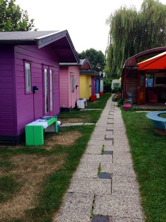 Lucky Lake Hostel : Cabins