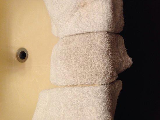 Branson Plantation Inn: Dirty Bath Linens
