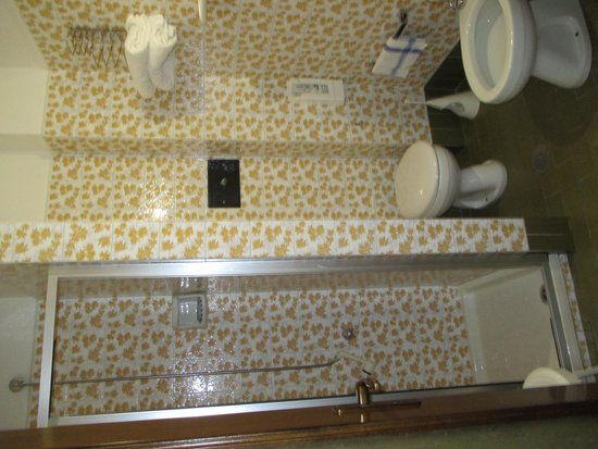 Hotel Flora Alpina : Bagno
