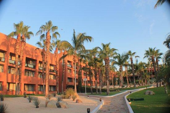 Paradisus Los Cabos: amanecer