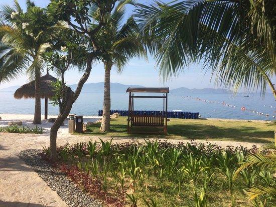 Amiana Resort : jardin