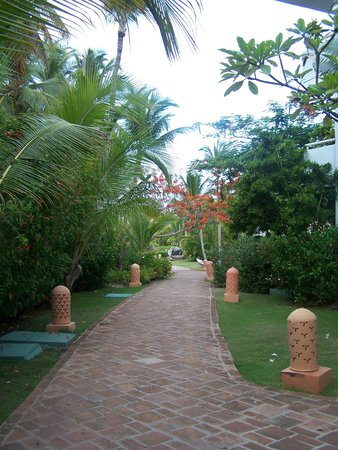 Excellence Punta Cana: HOTEL