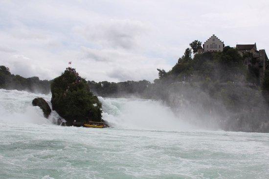 Rhine Falls : Falls