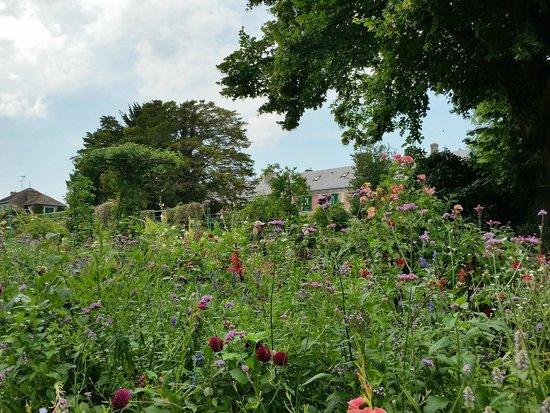 Maison et jardins de Claude Monet : Gardens