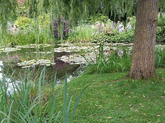 Maison et jardins de Claude Monet : View