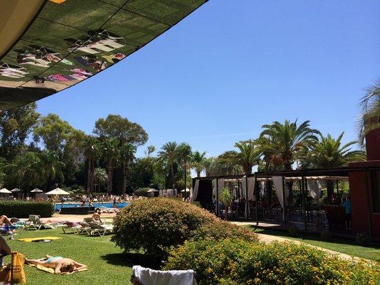 Silken Al-Andalus Palace Hotel : Jardín piscina