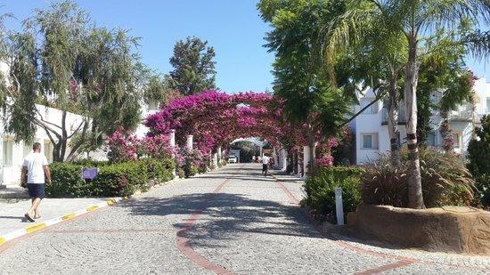 Kadikale Resort: Entrance to Resort