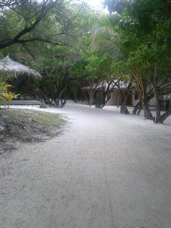 Adaaran Select Hudhuranfushi : Sand paths