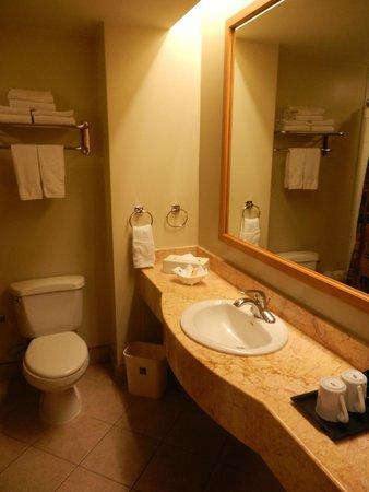 Sleep Inn San Jose Downtown: Bathroom