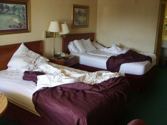 Econo Lodge: Beds , next day. did look ok before